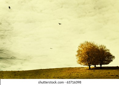 Landscape in autumn with crows