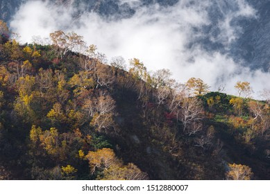 Landscape of Autumn Fall of Hakuba Valley in Nagano Chubu Japan