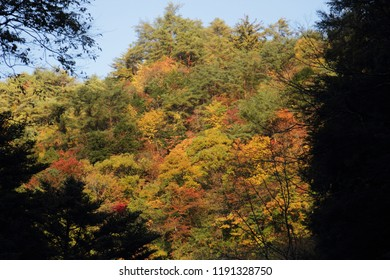 Landscape of autumn leaves and waterfall in Mie Prefecture of Japan