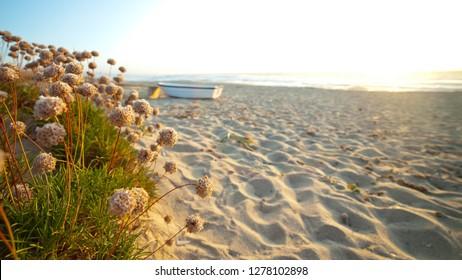 Landscape of Badesi beach, Sardinia