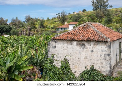 Landscape with banana plantation and old houses on the road to Puerto de la Cruz, Tenerife, Canary Islands