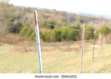 Landscape Of Barbed Wire Fence With T-Posts Along Green Pasture Field To Contain Livestock Including Cows With Trees, Mountains, And Sky Beyond On A Farm In South West Virginia
