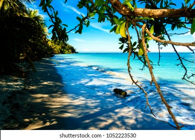 Landscape of the beach of the Cahuita National Park, Costa Rica