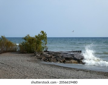 Landscape with beach on lake Ontario