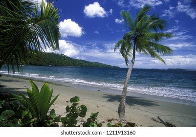 the landscape and Beach at the Village of Las Terrenas on Samana at Dominican Republic in the Caribbean Sea in Latin America.    Doninican Republic, Samana, April, 2006