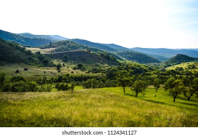 Landscape of a beautiful hills covert in green and a sunny sky