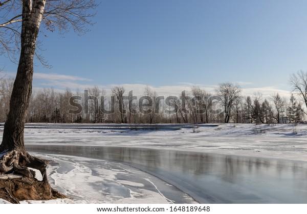 landscape-beginning-spring-melting-pond-