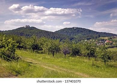 Landscape below the castle Buchlov - Czech Republic