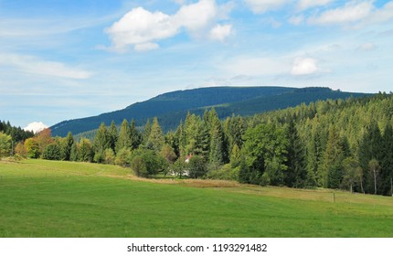 landscape of Beskydy mountains with hills covered with spruce forests and a meadow at the foreground in summer