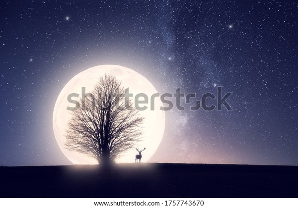 Landscape with big full moon and a silhouette of a tree and big deer