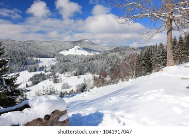 Landscape in the Black Forest. Menzenschwand, Germany.