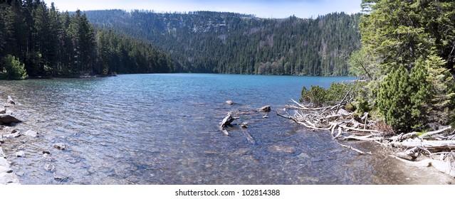 Landscape with Black Lake, Bohemian Forest - Czech Republic