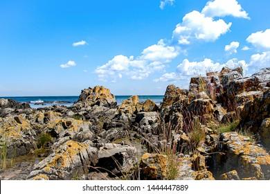 Landscape of Bornholm Island,Denmark, Beautiful view with blue sky background at Bornholm Island, Denmark. Sunshine day at stone beach