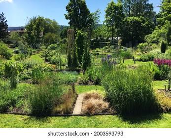 Landscape of the Botanical Garden St. Gallen or Landschaft des Botanisches Garten St. Gallen, Schweiz (The Botanical Garden in Saint Gall, Switzerland) - Shutterstock ID 2003593793