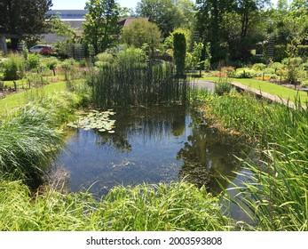 Landscape of the Botanical Garden St. Gallen or Landschaft des Botanisches Garten St. Gallen, Schweiz (The Botanical Garden in Saint Gall, Switzerland) - Shutterstock ID 2003593808