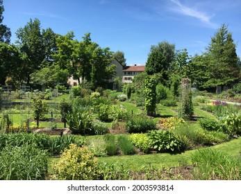 Landscape of the Botanical Garden St. Gallen or Landschaft des Botanisches Garten St. Gallen, Schweiz (The Botanical Garden in Saint Gall, Switzerland) - Shutterstock ID 2003593814