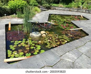 Landscape of the Botanical Garden St. Gallen or Landschaft des Botanisches Garten St. Gallen, Schweiz (The Botanical Garden in Saint Gall, Switzerland) - Shutterstock ID 2003593820
