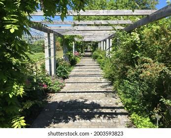 Landscape of the Botanical Garden St. Gallen or Landschaft des Botanisches Garten St. Gallen, Schweiz (The Botanical Garden in Saint Gall, Switzerland) - Shutterstock ID 2003593823