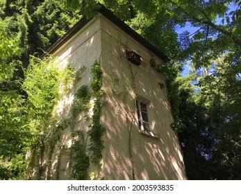 Landscape of the Botanical Garden St. Gallen or Landschaft des Botanisches Garten St. Gallen, Schweiz (The Botanical Garden in Saint Gall, Switzerland) - Shutterstock ID 2003593835