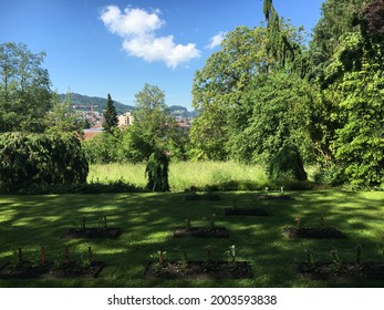 Landscape of the Botanical Garden St. Gallen or Landschaft des Botanisches Garten St. Gallen, Schweiz (The Botanical Garden in Saint Gall, Switzerland) - Shutterstock ID 2003593838