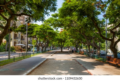 Landscape of  boulevard Rothschild, the most prestige and luxury area in Tel Aviv.