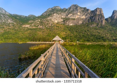 Landscape with bridge over the lotus pond on mountain background at Prachuap Khiri Khan,Thailand.