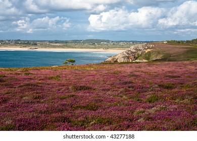 Landscape of Britany - France