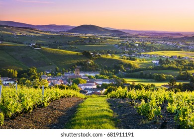 Landscape and Brouilly hill at sunrise in Beaujolais land