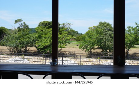 The landscape from the cafe