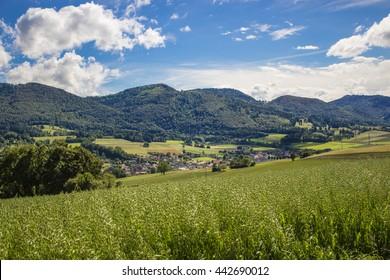 Landscape at Cantom Jua, Switzerland