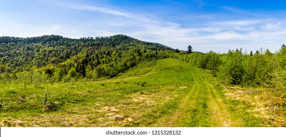 landscape of the carpathian mountains, national park Skolevski beskidy, Lviv region of Western Ukraine