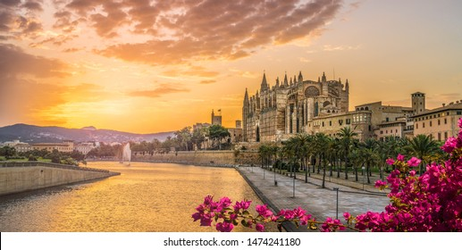 Landscape with Cathedral La Seu at sunset time in Palma de Mallorca islands, Spain