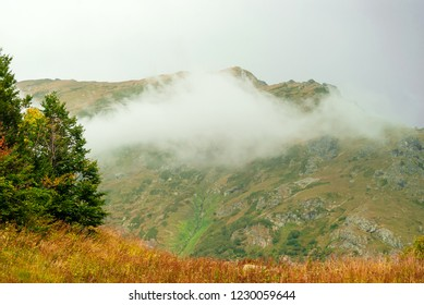 landscape of the Caucasian highlands with a cloud on a mountainside and autumn meadow with trees in the foreground