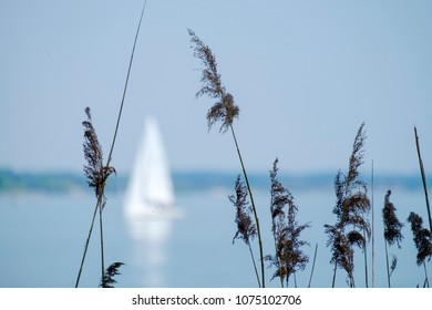 Landscape Chiemsee with boat in spring