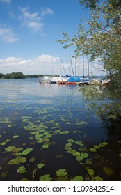 landscape chiemsee lake with colorful moored sailboats and green waterlily leaves. summer idyll bavaria