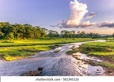 Landscape of Chitwan National Park, Nepal