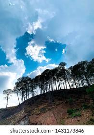 Landscape close to Kasauli in India