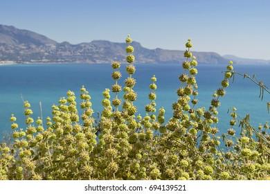 Landscape of the coast of El Albir in Alicante, Spain
