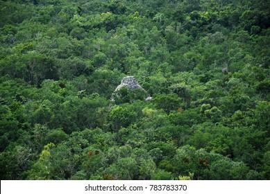 Landscape in Coba