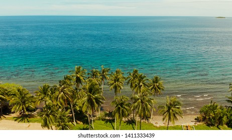 Landscape with coconut trees and turquoise lagoon, view from above. Seascape with palm trees and a pebbly beach, Philippines, Camiguin,aerial view.