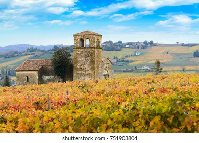 Landscape and colors of Beaujolais land at fall