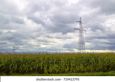 Landscape: cornfield, storm clouds and power lines