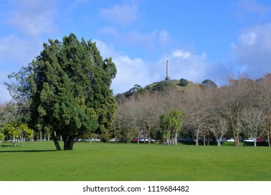 Landscape of Cornwall Park and One Tree Hill in Auckland, New Zealand.