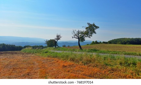 Landscape of countryside in europe