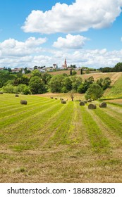 Landscape of the countryside near Toulouse in southern France. Agricultural field. Village with church and water tower.