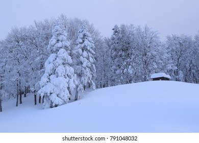 landscape ; covered in heavy snow