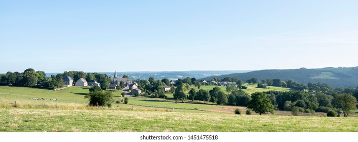 landscape with cows in ardennes region of belgian part wallonia near stavelot in summer