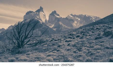 Landscape with Cuernos del Paine, Torres del Paine national park, Chile, Patagonia with vintage effect (soft focus)