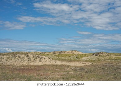 Landscape of the Curonian Spit in the summer