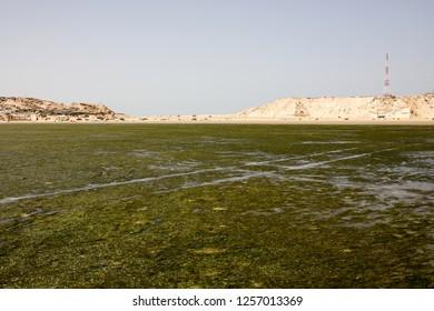 landscape of Dakhla Morocco